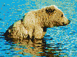 Brown Bear in Creek - Mosaic Art