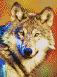 Grey Wolf - Mosaic Art
