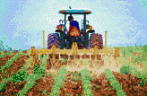 Tractor cultivating soybeans - Mosaic Art