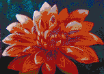 The Dahlia - Mosaic Art